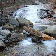 """Треккинг для """"чайников"""" - поход на красивую таёжную речку"""