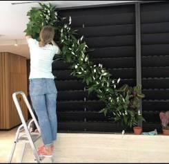 Озеленение офисов и уход за растениями