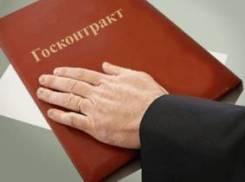 Привлечение инвестиций под государственные контракты