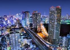 Япония. Токио. Экскурсионный тур. Специальное предложение на Новый ГОД 2019