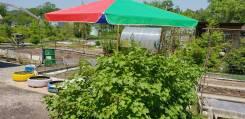 Продается очень хорошая уютная дача в живописном месте в Соловей ключе. От частного лица (собственник)