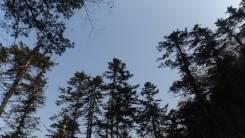 Покори вершину Пидана вместе с Оникс-Тур 22.09. Цена 1750 руб.!