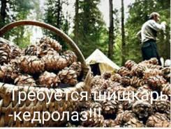 Разнорабочий. ИП Клименко М.В. Проспект Народный 11
