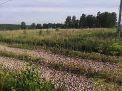 Участок в Емельяновском районе 10 сот. (ДНT). 1 000кв.м., собственность, от частного лица (собственник)