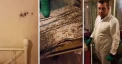 1000 Рублей. Уничтожение насекомых! (тараканы, клопы, блохи, муравьи). Акция длится до 30 сентября