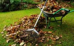 Подготовка участка к зиме, уборка огорода, укрытие растений, ландшафт