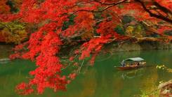 """Япония. Токио. Экскурсионный тур. Тур """"Осенние каникулы в Японии"""""""