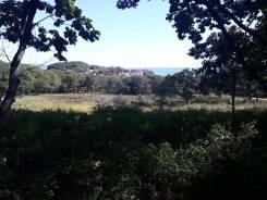 Продам землю у моря в п. Ливадия. 2 000кв.м., собственность, от агентства недвижимости (посредник). Фото участка