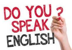 Репетитор английского , французского языков
