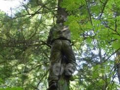 Шишкарь-кедролаз. Приморский край