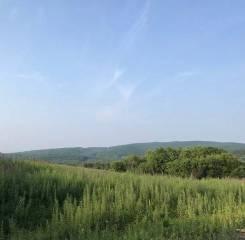 Земельный участок под дачное хозяйство п. Трудовое. 829кв.м., собственность, от агентства недвижимости (посредник). Фото участка