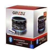 Портативная акустика 1.0 Ginzzu GM-880G (BT
