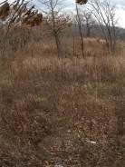 Продам земельный участок п. мирный. 1 000кв.м., собственность, от частного лица (собственник). Фото участка