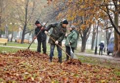 Качественная уборка листвы и снега