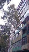 2-комнатная, улица Гризодубовой 41. Борисенко, агентство, 41кв.м. Дом снаружи