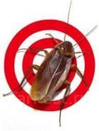 От 500рублей уничтожение тараканов, клопов , и других насекомых