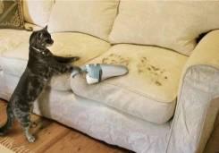 Химчистка мягкой мебели!