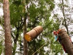Служба по удалению деревьев №1