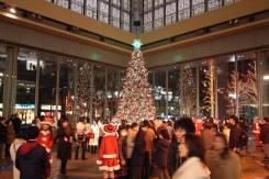 """Япония. Токио. Экскурсионный тур. Экскурсионный тур """"Рождественские огни Токио""""! Честные цены!"""