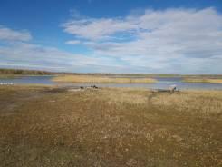 Продам земельный участок берег оз. Курги. 63 000кв.м., собственность