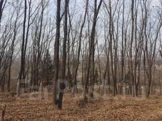 Продается земельный участок в с. Вольно-Надеждинское. 1 500кв.м., собственность, электричество, от частного лица (собственник). Фото участка