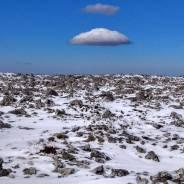 Поездки гора Снежная