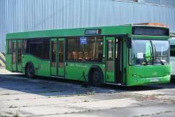МАЗ 103462. Автобус