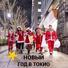 Япония. Токио. Экскурсионный тур. Новый год в Японии 30.12-06.01. Семеновская 7А