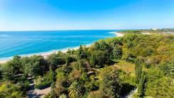 25 соток ИЖС в Абхазии в 500 метрах от моря. 2 500кв.м., собственность, электричество, вода, от частного лица (собственник)