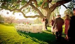 Кейтеринг, фуршеты , свадьбы, повора на выезд, детские праздники.