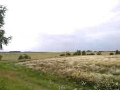 Земельный участок в Лучаново. 1 060кв.м., собственность, электричество