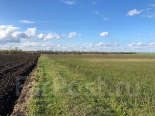 Продам участок земли. 2 000кв.м., собственность, электричество, вода, от частного лица (собственник)