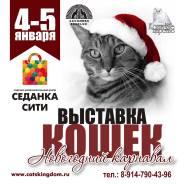 """4 - 5 января Международная выставка кошек """"Ассолюкс"""" , продажа котят."""
