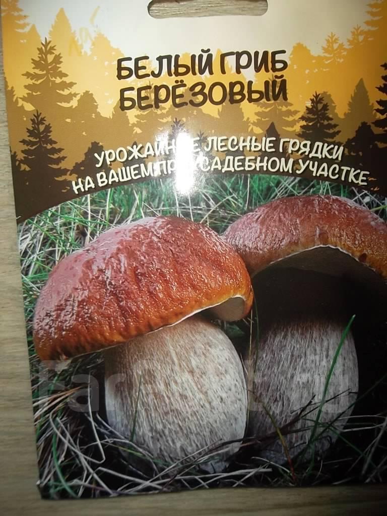 Грибы дешево Южно-Сахалинск MDA гидра Ачинск