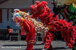 Цзямусы. Экскурсионный тур. Новый год в Цзямусы. 5 дней. АВИА тур.