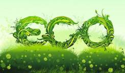 Эко-обработка от насекомых! Эффективно и Безопасно!