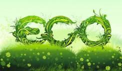 Био инсектициды! Эко-обработка Эффективно и Безопасно!