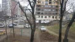 1-комнатная, улица Некрасова 82а. Центр, частное лицо, 30кв.м. Вид из окна днём