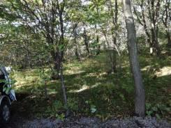 Продам земельный участок на Золотарях. 1 000кв.м., собственность, электричество, от агентства недвижимости (посредник). Фото участка