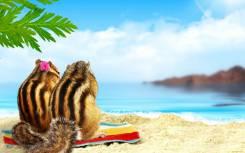 Таиланд. Паттайя. Пляжный отдых. Паттая 03.12