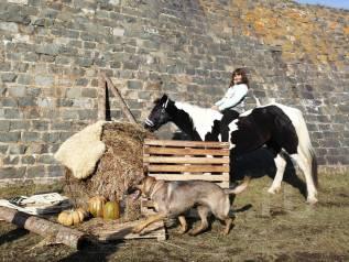 """Конные прогулки, фотосессии с лошадьми от КСК """"Диамант"""""""