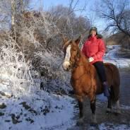 Конные маршруты для всех. Конные прогулки и конные походы.