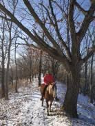 Первая Конная Прогулка, конные походы.