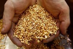 Ищу инвестора, золотодобыча, разработка россыпных месторождений.