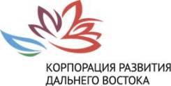 """Аудитор. АО """"Корпорация Развития Дальнего Востока"""". Г. Владивосток , проспект Океанский 17, Fresh Plaza"""