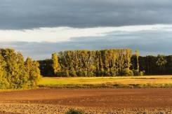 Участок Под КФХ (Фермерство). собственность, вода, от частного лица (собственник)