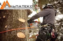Удалению аварийных деревьев, Санитарная обрезка, Кронирование.