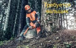 Вальщик леса. Дальнереченский район