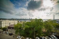 1-комнатная, улица Пушкинская 50. Центр, 42кв.м. Вид из окна днем