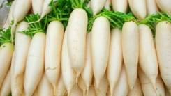 Работа в Корее, для женщин, остров Чеджу! Сортировка овощей!